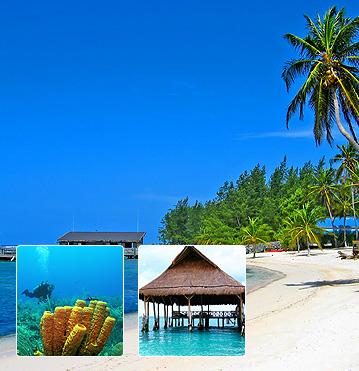 Save on cheap flights to Cayman Brac
