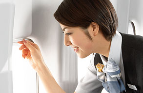 Earn miles with Japan Airlines