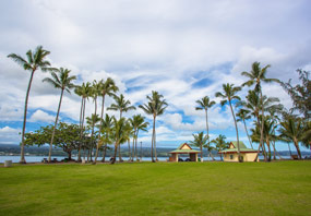 Cheap Flights to Hilo