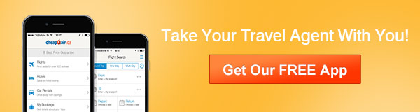 Take Your Travel Agent With You