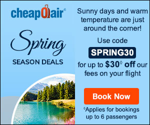 New Year's Travel Deals! Take up to $25 off our fees on flights by using promo code NY25.Book Now!