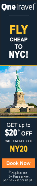 Fly Cheap to NYC! Save up to $20 with Promo Code NY20 Book Now!