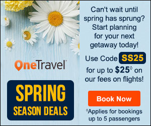 Summer Travel Deals! Get up to $35 off◊ our fees on flights with promo code SB35