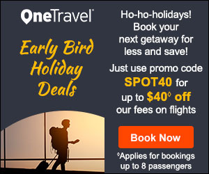 Early Bird Holiday Deals Get up to $40 off◊ our fees on flights with promo code SPOT40
